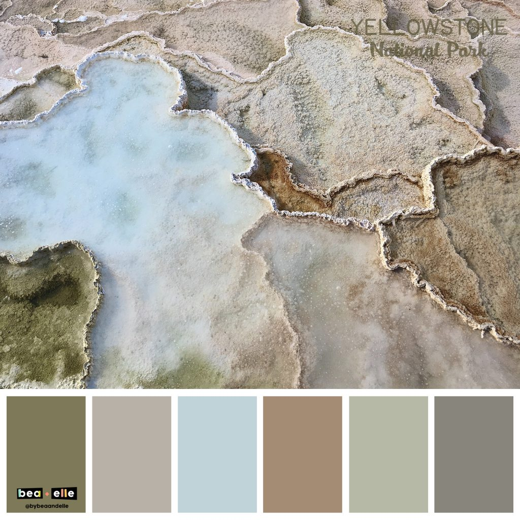 Color Palette Inspiration by top US graphic and web designers for small businesses, Bea and Elle: image of Yellowstone national park and a coordinating color palette of brown, grey, blue, and green.