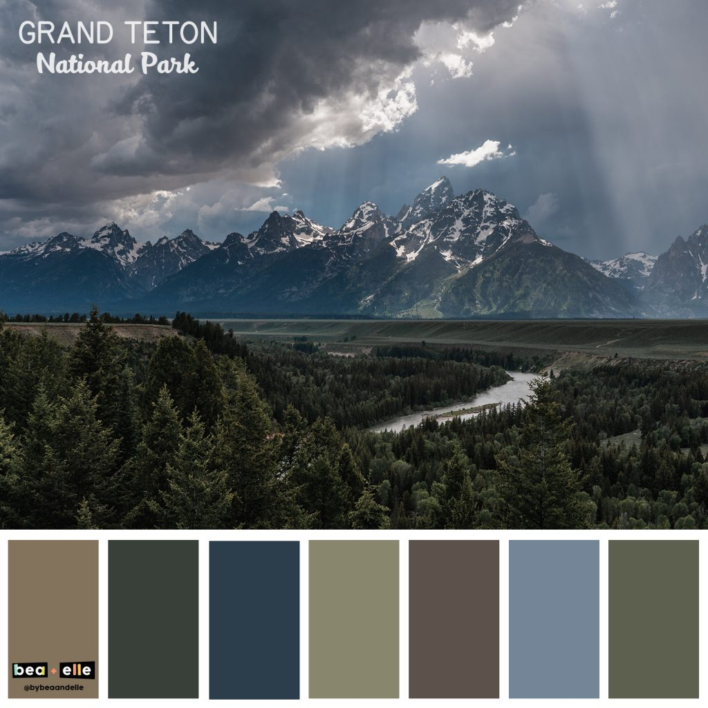 Color Palette Inspiration by top US graphic and web designers for small businesses, Bea and Elle: image of the Grand Teton national park and a coordinating color palette of browns, blues, and greens.