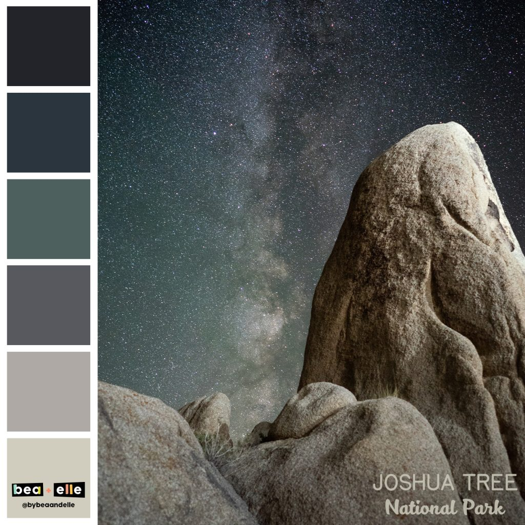 Color Palette Inspiration by top US graphic and web designers for small businesses, Bea and Elle: image of Joshua Tree national park and a coordinating color palette of grey, blue, green and black.